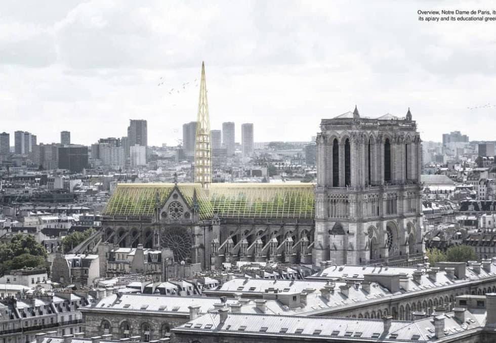 Notre Dame panal de abejas